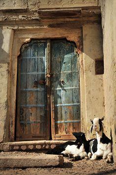 Doorway in Bikaner, Rajasthan   Photographed by Anthon Jackson