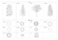 平面図・立面図に使える樹木シンボルCADデータ / DLmarket