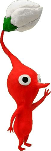 Red Pikmin-Red Skin Suit (http://www.spencersonline.com/product/red-skin-suit-adult-costume/), just add the nose (if red Pikmin) and a custom hat and wide eyes! Don't forget the leaf/flower! <3