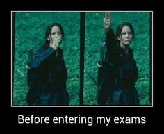 Exam + hunger games funny quote