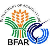 BFAR Logo Board Exam Result, Iloilo City, Leyte, Visayas, Philippine News, Exam Results, The Agency, Samar, School S