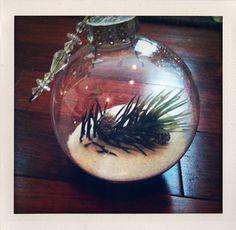 Amy Bird Tweets: DIY - Christmas Ornaments