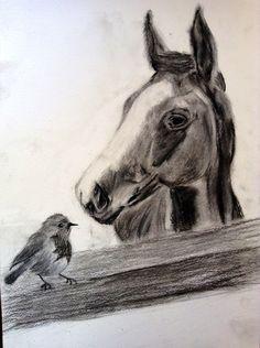 Hello Christmas Robin  #charcoal #drawing #art #horse