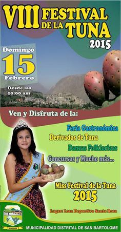 VIII Festival de la Tuna 2015 en San Bartolomé