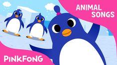 The Penguin Song ♫ Penguin Dance Song ♫ Brain Breaks ♫ Kids Action Songs by The Learning Station Songs For Toddlers, Rhymes For Kids, Kids Songs, Penguin Songs, Penguin Dance, Preschool Songs, Music Activities, Video Baby Shark, Learning Spanish For Kids