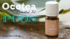 I mentioned last week that I received Progessence Plus serum, EndoFlex, and Ocotea for Christmas. These three oils had been on my wish list for such a long time, and I was so excited to get home after the holidays and start using them! I wasespeciallyexcited about Ocotea essential oil, as it claims to help [...]