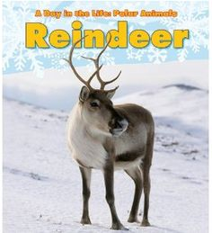 Fiction and Nonfiction Books on Reindeer