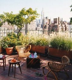 A dream terrace garden