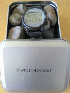Mom Knows Best : How I Keep My Boys On Track With WatchMinder