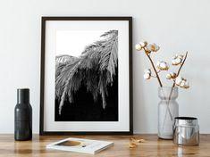 Egypt Tourism, Monochrome Print, Coastal Wall Art, Nature Prints, Fine Art Photography, Palm, Tropical, Etsy Shop, Black And White