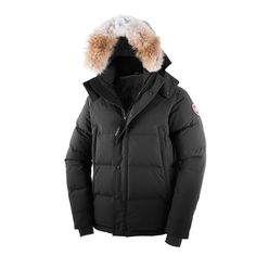 Canadian goose mantel