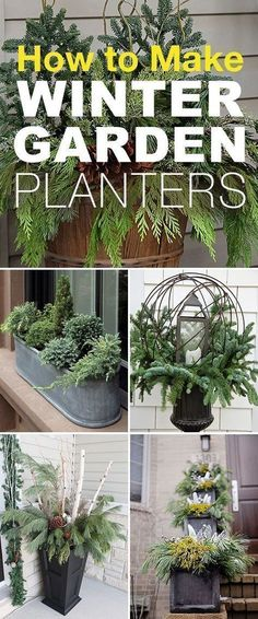How to Make Winter Garden Planters! • These easy winter planter ideas, tips and tricks will help you create winter containers that wow! #christmastips&tricks #gardenplanters