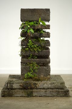 Garden Planters The Path of Least Resistance - Concrete Works 2009 by Jamie North, via Behance Concrete Crafts, Concrete Art, Concrete Projects, Concrete Garden, Concrete Sculpture, Garden Sculpture, Jardin Zen Miniature, Deco Nature, Concrete Planters
