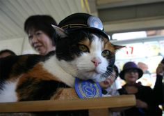 Stationmaster Tama from Wakayama Electric Railway Has Died