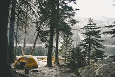 Manchik Photography » Photographers: Yuriy and Julia Manchik, Seattle and worldwide  CAMPING....this is so pretty.