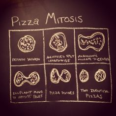Pizza Mitosis.  Good way to introduce cell mitosis.