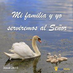 """""""Obedezcan a Dios. Desháganse de sus dioses. Deben elegir. Pero mi familia y yo serviremos al Señor"""". (Jos.24:14-15 TLA resumida)   Es curioso como el pueblo se compromete a servir a Dios, y a dejar sus dioses, y en cuanto mueren Josué y aquellos que vivieron el éxodo de Egipto se olvidan de ese compromiso. ¿Será que a nosotros también nos pasa eso?¿Cuales son esos dioses que nos separan hoy de Dios? (EAF) HopeMedia.es"""