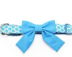 Blue Girl Dog Bow Tie Collar Girly Preppy Turquoise Dot Dog Collar Bowtie with Tail
