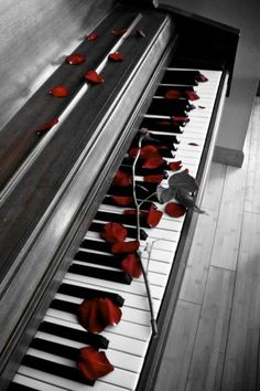 piano with rose petals