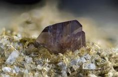 Axinite-(Mn) with Epidote - La Combe de la Selle, St Christophe-en-Oisans, Bourg d'Oisans, Isère, Auvergne-Rhône-Alpes, France FOV : 10 mm