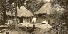 Indentured Servants lived here Mud hut Thatched roof House roof