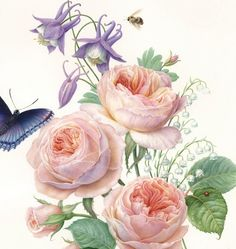 Austen roses with columbine and lily of the valley I Karen Kluglein