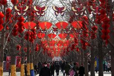 Beijing from Slideshow: 9 Best Places to Celebrate Chinese New Year Around the World