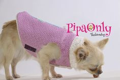 Ropa Perros Pipa Only. Coleccion Exclusiva.