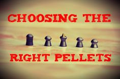 Choosing the right pellets - Daystate Wolverine B .22