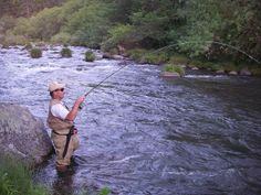Photo courtesy of Shasta Trout Pit River fly fishing guides. Pit River.  http://www.shastatrout.com/