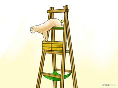 ladder cat tree.....GREAT idea...so much less work than one from scratch!