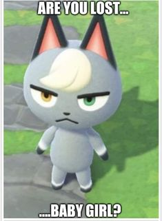 THIS PHOTO IS NOT MINE, I SADLY LOST THE CREATOR'S USERNAME FFS anyways enjoy a raymond nude Animal Crossing Funny, Video Game Memes, Quality Memes, Gaming Memes, Stupid Funny Memes, Manga, Reaction Pictures, Best Memes, Pixel Art