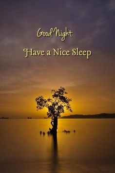 Good Night Wishes, Good Night Quotes, Goodnight Quotes Sweet, Love You Daughter Quotes, Good Morning Msg, Sweet Texts, Sweet Night, Nighty Night, Always Smile