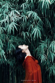 古风摄影 @榆木笙笙收集_花瓣美女  China mood