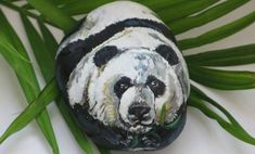 Best Animal Painted Rocks for Beginner Rock Painters | How to Paint Rocks