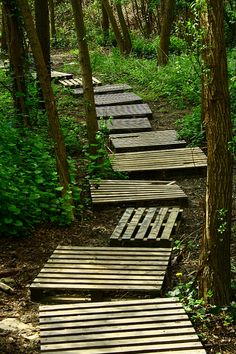 Pallet path - I need this from our garden to the compost pile (which by the way, is made with pallets!)
