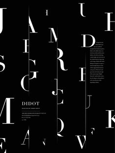 Didot poster by Steven Xue - Typography - Type Posters, Graphic Design Posters, Graphic Design Typography, Creative Typography, Graphisches Design, Book Design Layout, Pattern Design, Vintage Typography, Typography Poster