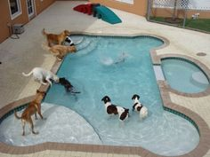 Unique Pools in Cool Shapes - Creative Backyard and Landscape Design - Good Housekeeping