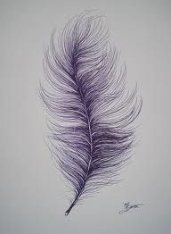 ostrich feather images - Google Search