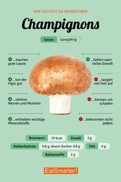 Das solltest du über Champignons wissen | eatsmarter.de #champignons #ernährung #infografik