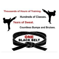 Get a karate black belt (maybe not in this life, but in the next one for sure)!