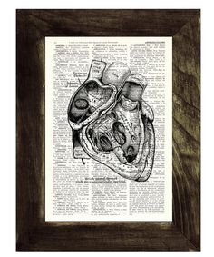 Heart section Anatomy Wall art Dictionary  Print on by PRRINT, $7.99
