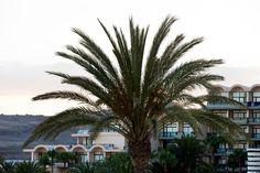 Bahía Feliz - Gran Canaria - Spain