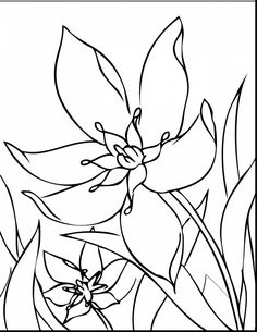 astonishing spring flower coloring pages with spring coloring pages and spring coloring pages crayola