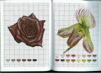 "Gallery.ru / Mongia - Альбом ""Flower Variations"""