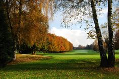 Golf Club Monticello- Buca 18