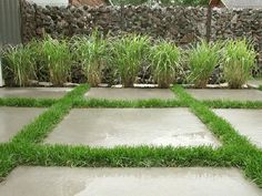 Marie ward toes111 on pinterest cheap idea driveway landscaping cheap do it yourself landscape upgrades solutioingenieria Image collections