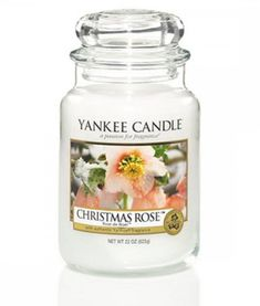 Christmas Rose: Christmas memories bloom in the authentic perfume of delicate rose petals with a hint of pine. Yankee Candle Christmas, Christmas Candle Holders, Christmas Rose, Christmas Candles, Xmas, Rose Candle, Candle Jars, Scented Candles, Yankee Candles