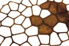 The Growing Lab - Mycelia ©Officina Corpuscoli   Maurizio Montalti…