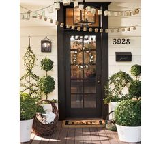 Live Ivy Classic Topiary | Pottery Barn